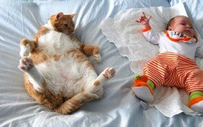 kids-with-cats-605.jpg