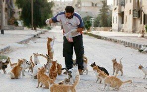 cat-man-aleppo-syria-11.jpg
